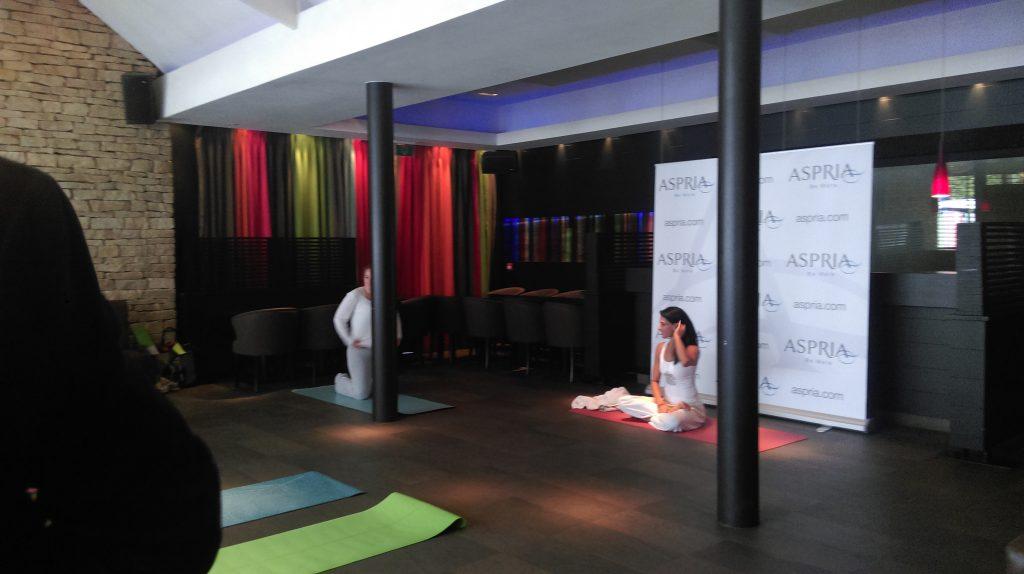 brussels yoga day - bois de la cambre bruxelles